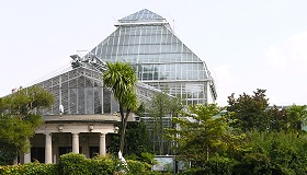 Munich Botanical Garden